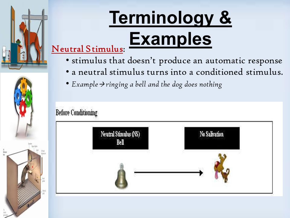 a study of conditional stimulus using a reward Conditioned stimulus definition at dictionarycom, a free online dictionary with pronunciation, synonyms and translation a previously neutral stimulus that, after repeated association with an unconditioned stimulus, elicits the response produced by the unconditioned stimulus itself.