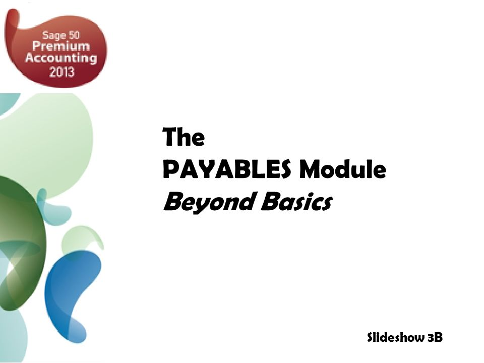 The PAYABLES Module Beyond Basics Slideshow 3B