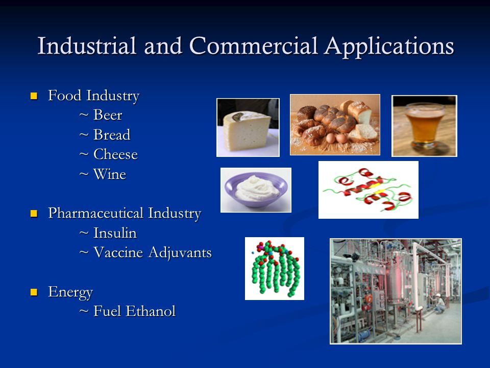 Industrial and Commercial Applications Food Industry Food Industry ~ Beer ~ Bread ~ Cheese ~ Wine Pharmaceutical Industry Pharmaceutical Industry ~ Insulin ~ Vaccine Adjuvants Energy Energy ~ Fuel Ethanol