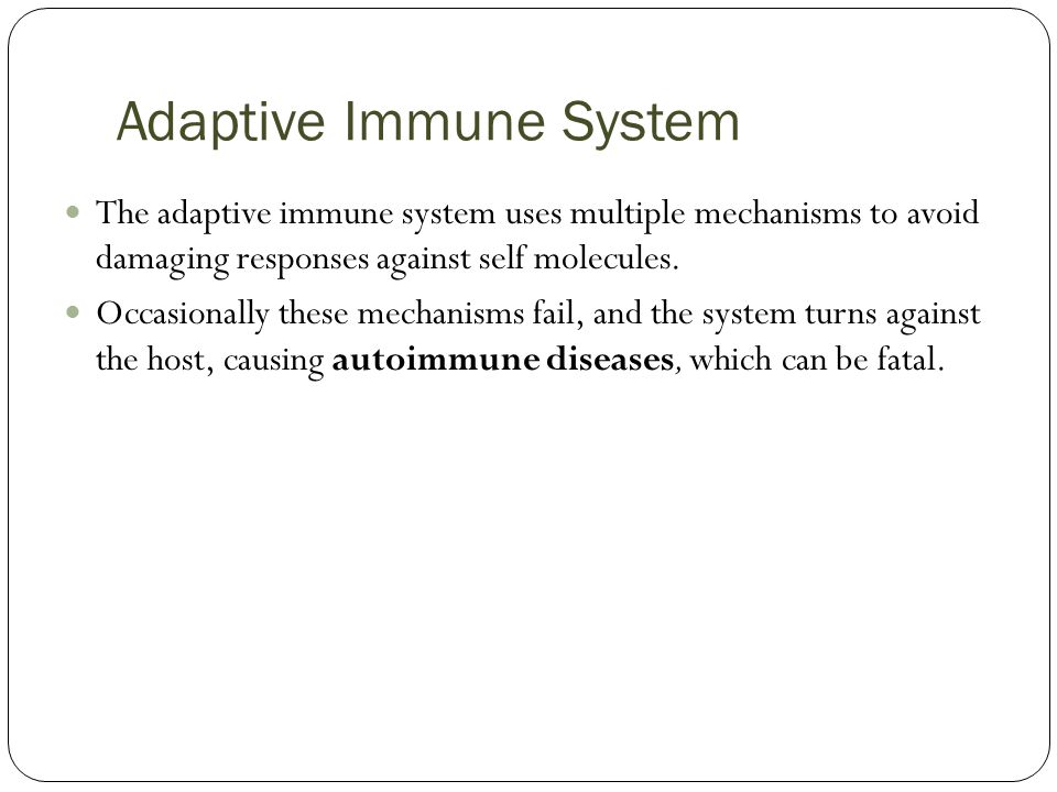 Adaptive Immune System The adaptive immune system uses multiple mechanisms to avoid damaging responses against self molecules.