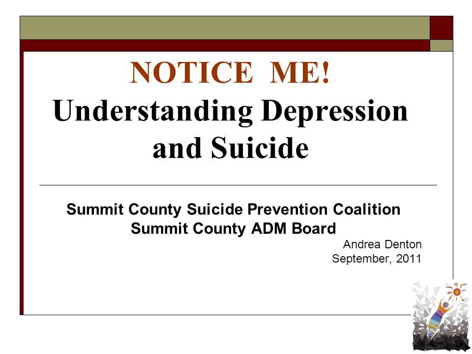 summit county adm board