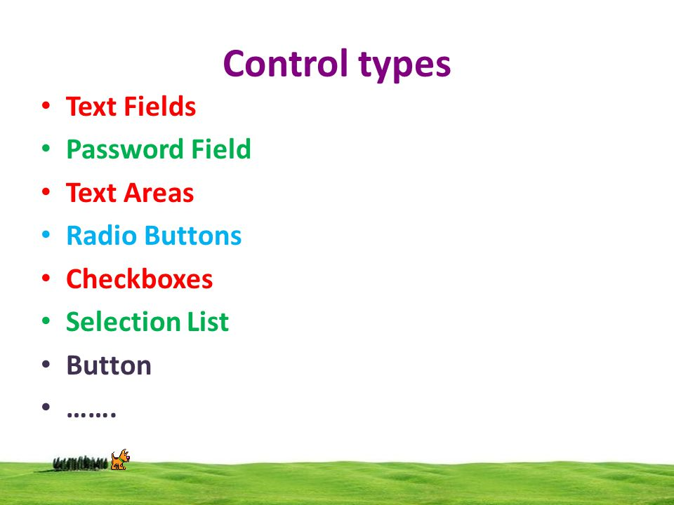 Control types Text Fields Password Field Text Areas Radio Buttons Checkboxes Selection List Button …….