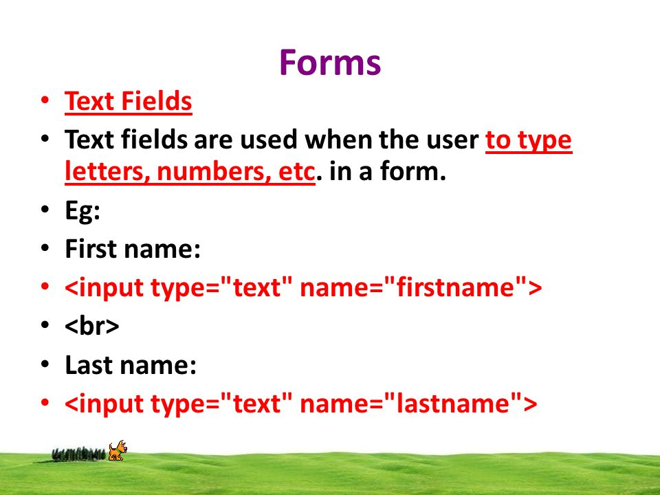 Forms Text Fields Text fields are used when the user to type letters, numbers, etc.