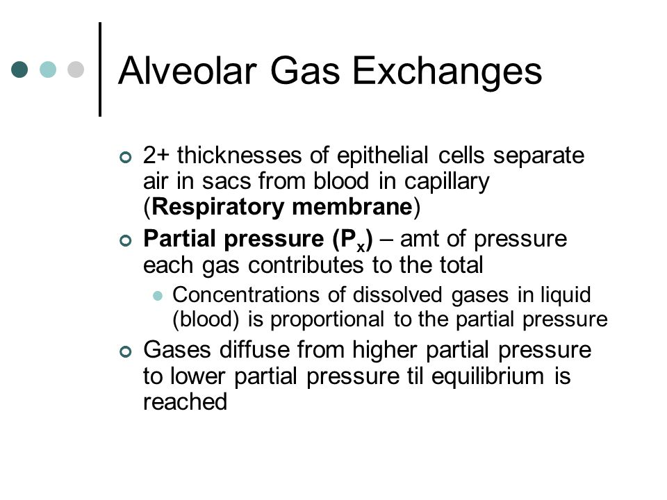 Alveolar Gas Exchanges 2+ thicknesses of epithelial cells separate air in sacs from blood in capillary (Respiratory membrane) Partial pressure (P x ) – amt of pressure each gas contributes to the total Concentrations of dissolved gases in liquid (blood) is proportional to the partial pressure Gases diffuse from higher partial pressure to lower partial pressure til equilibrium is reached