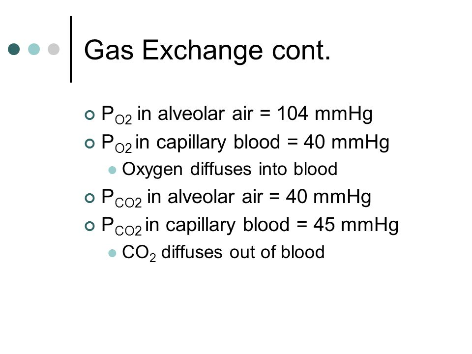 Gas Exchange cont.