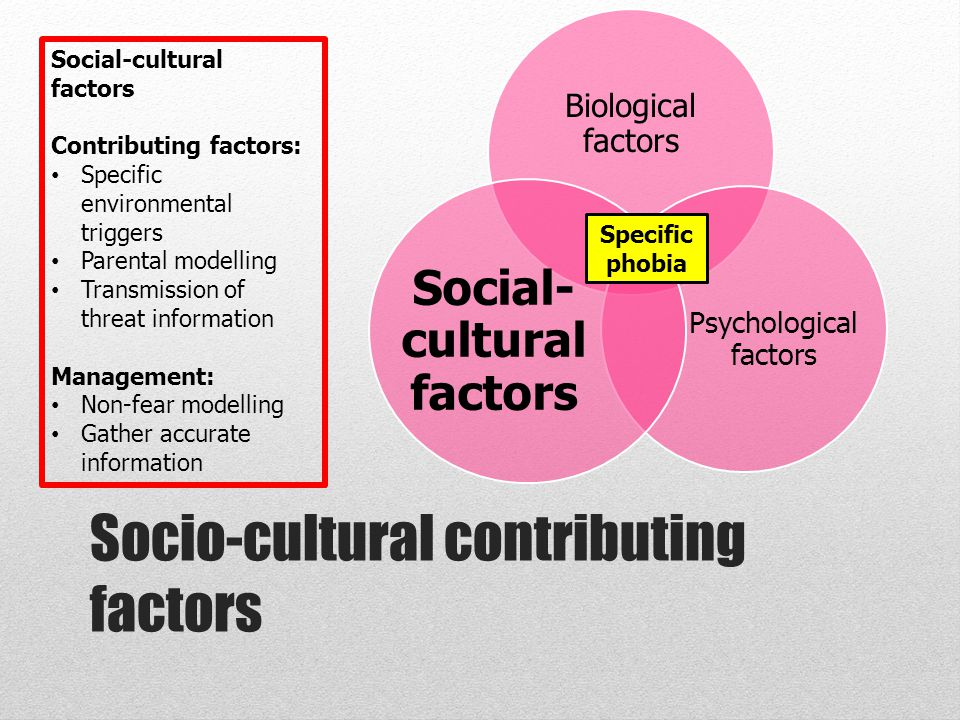 social and cultural factors in health Health and social behaviour: social, behavioural and other determinants of the choice of diet diet choice is a complex area because there are a number of factors that affect the population's and an individual's choice of food.
