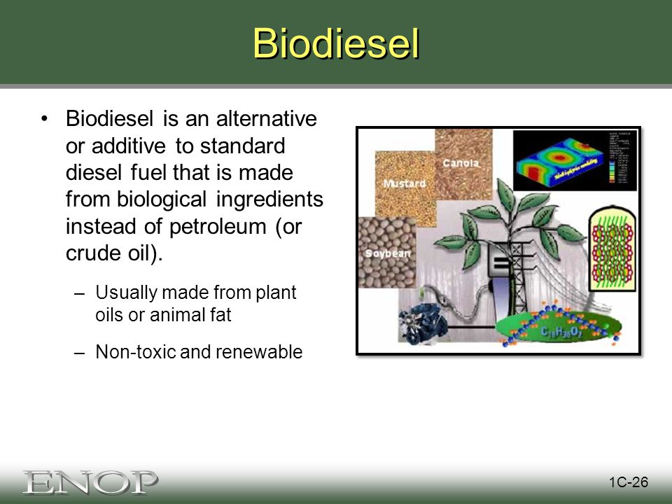 Biodiesel Biodiesel is an alternative or additive to standard diesel fuel that is made from biological ingredients instead of petroleum (or crude oil).