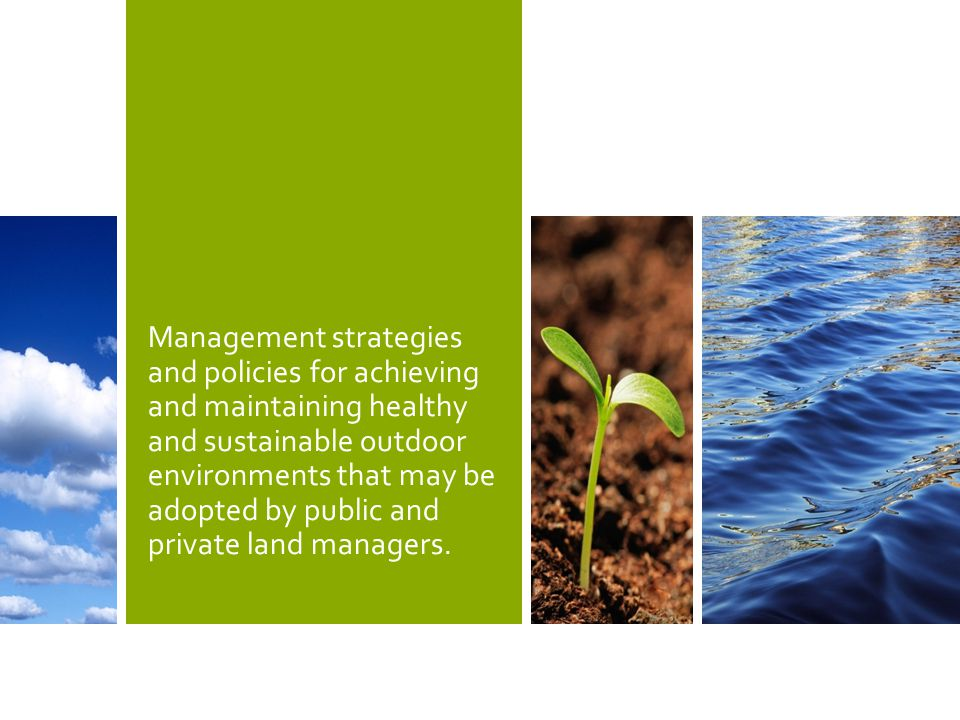 Management strategies and policies for achieving and maintaining healthy and sustainable outdoor environments that may be adopted by public and private land managers.