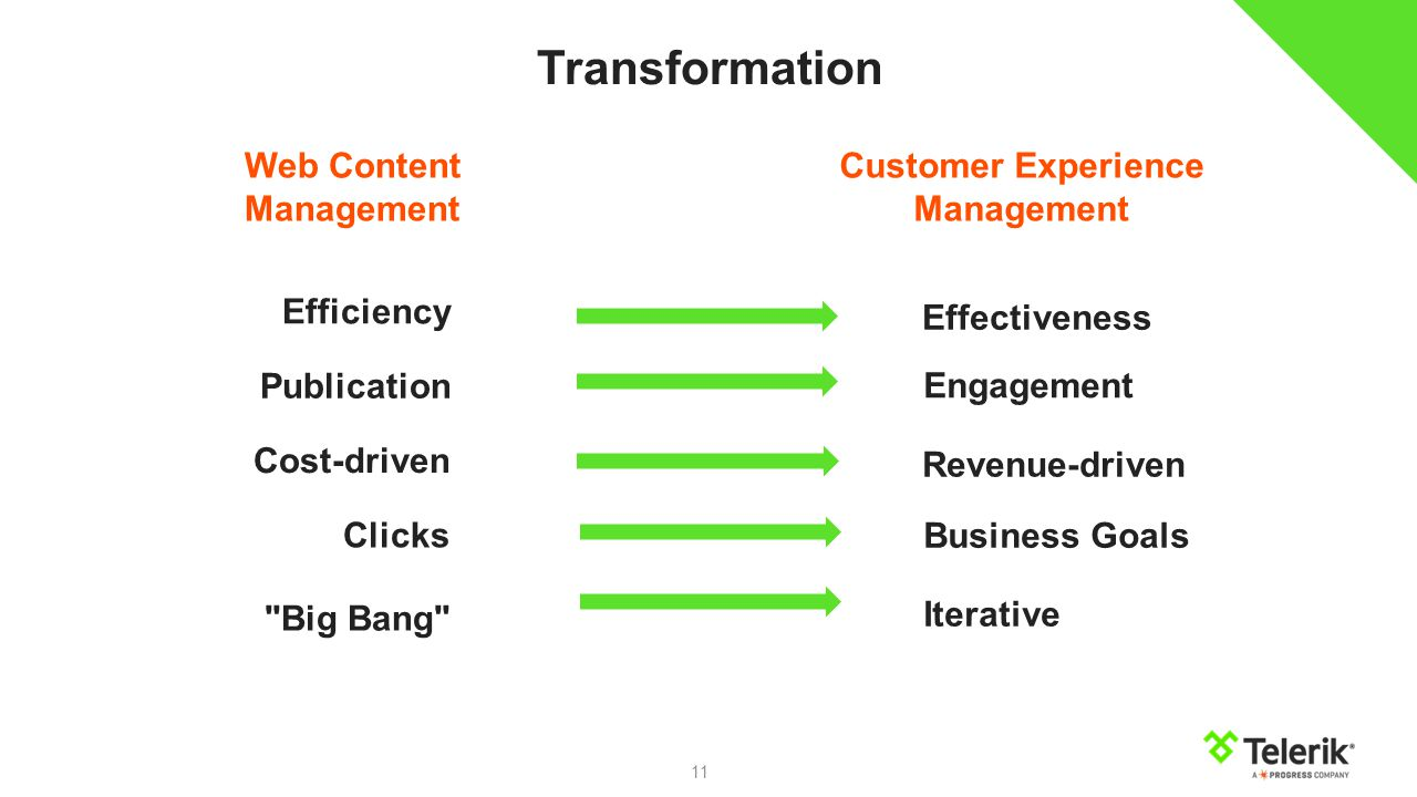 11 Efficiency Publication Cost-driven Clicks Big Bang Effectiveness Engagement Revenue-driven Business Goals Iterative Web Content Management Customer Experience Management Transformation
