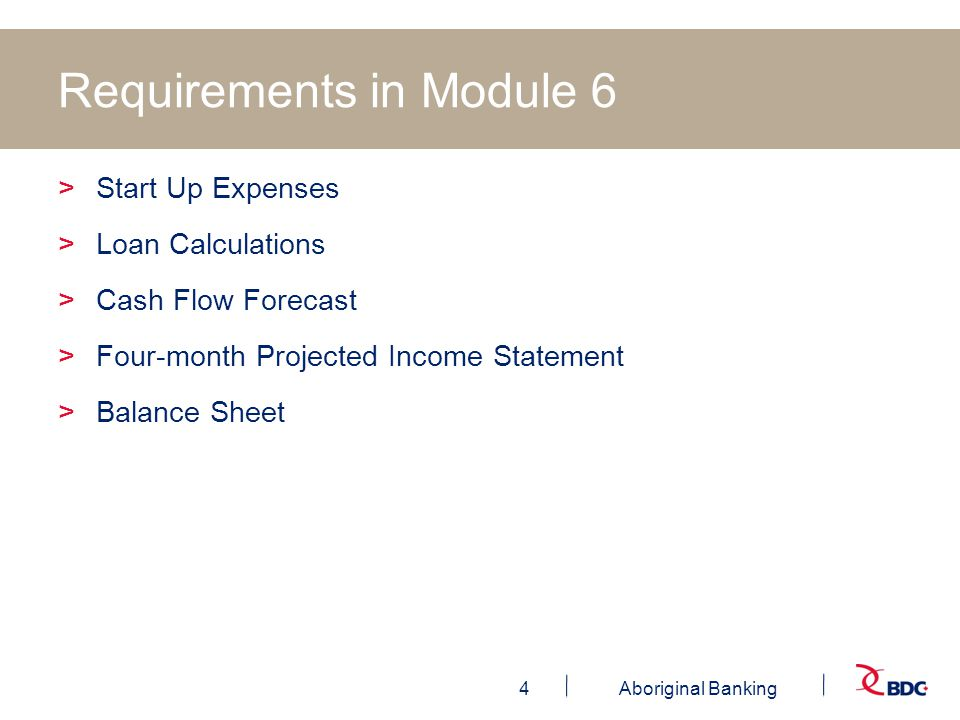 4Aboriginal Banking Requirements in Module 6 >Start Up Expenses >Loan Calculations >Cash Flow Forecast >Four-month Projected Income Statement >Balance Sheet