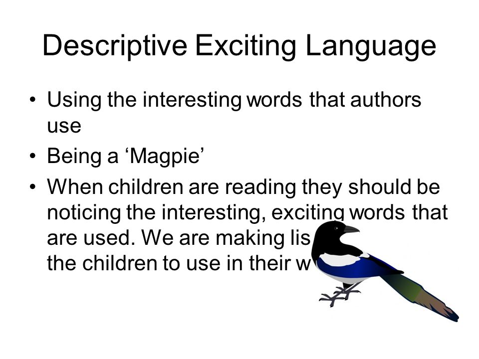 Descriptive Exciting Language Using the interesting words that authors use Being a 'Magpie' When children are reading they should be noticing the interesting, exciting words that are used.