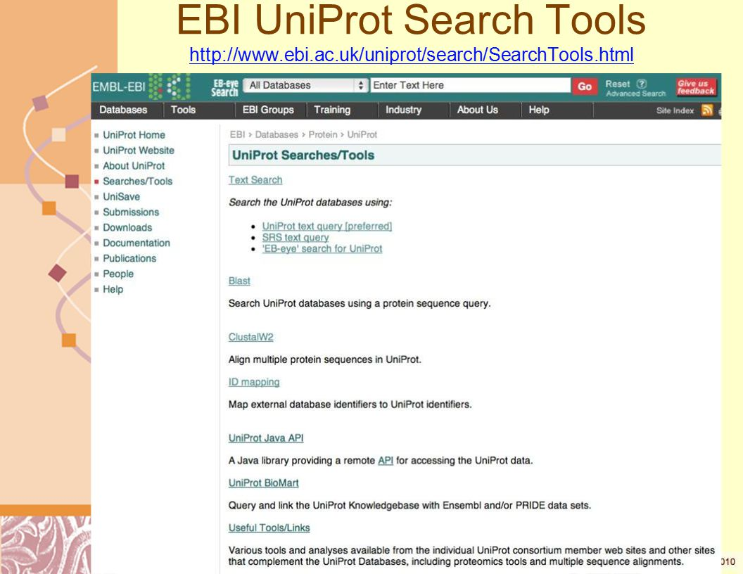 EBI UniProt Search Tools