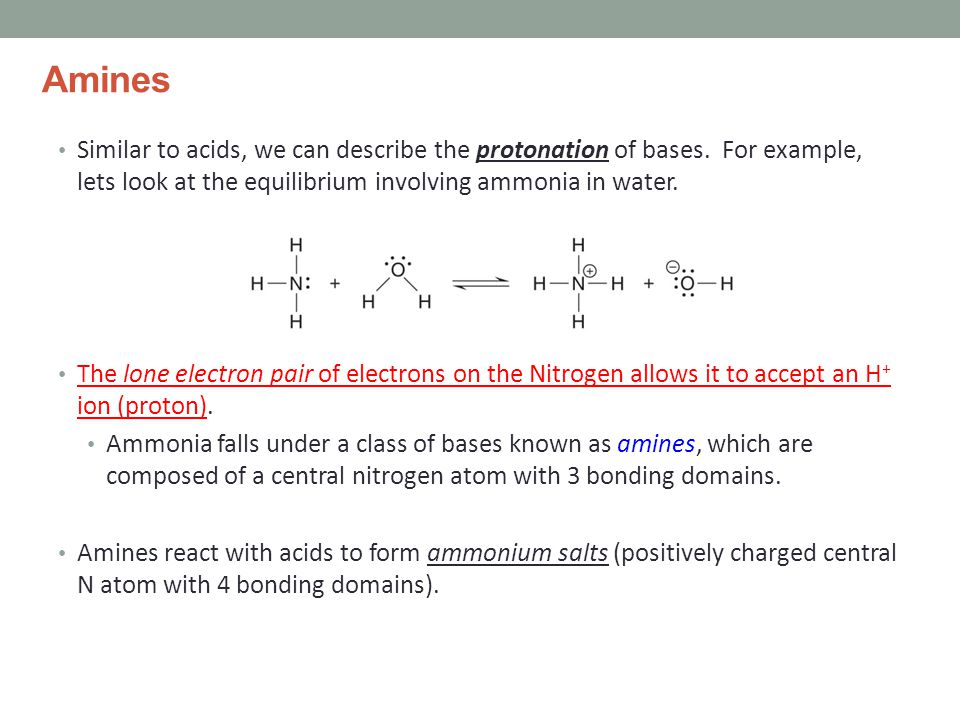 Amines Similar to acids, we can describe the protonation of bases.