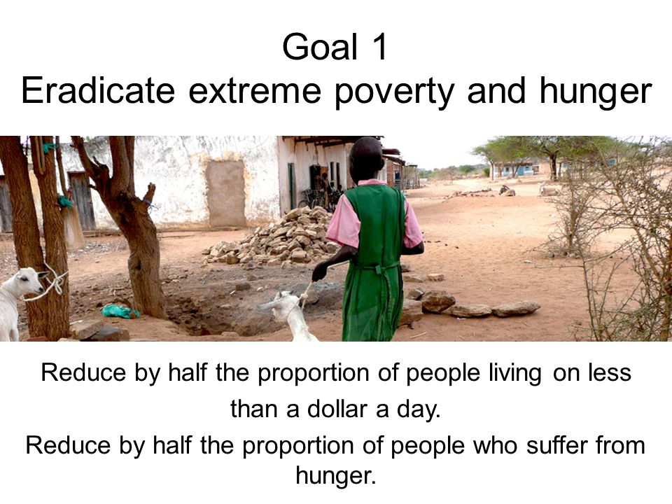 Goal 1 Eradicate extreme poverty and hunger Reduce by half the proportion of people living on less than a dollar a day.