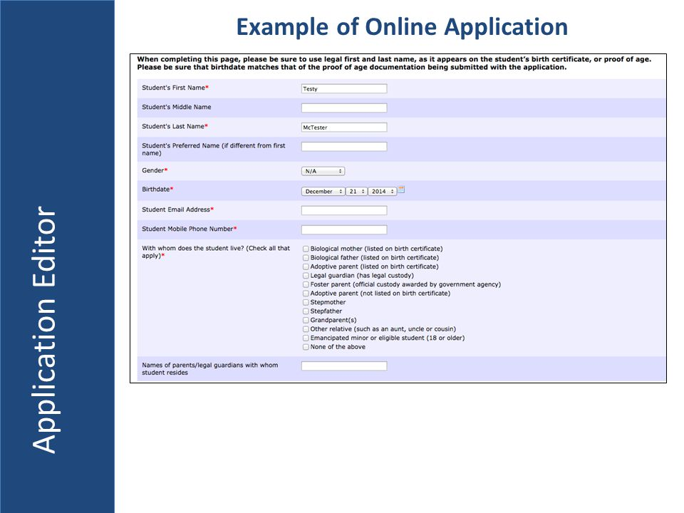 Application Editor Example of Online Application
