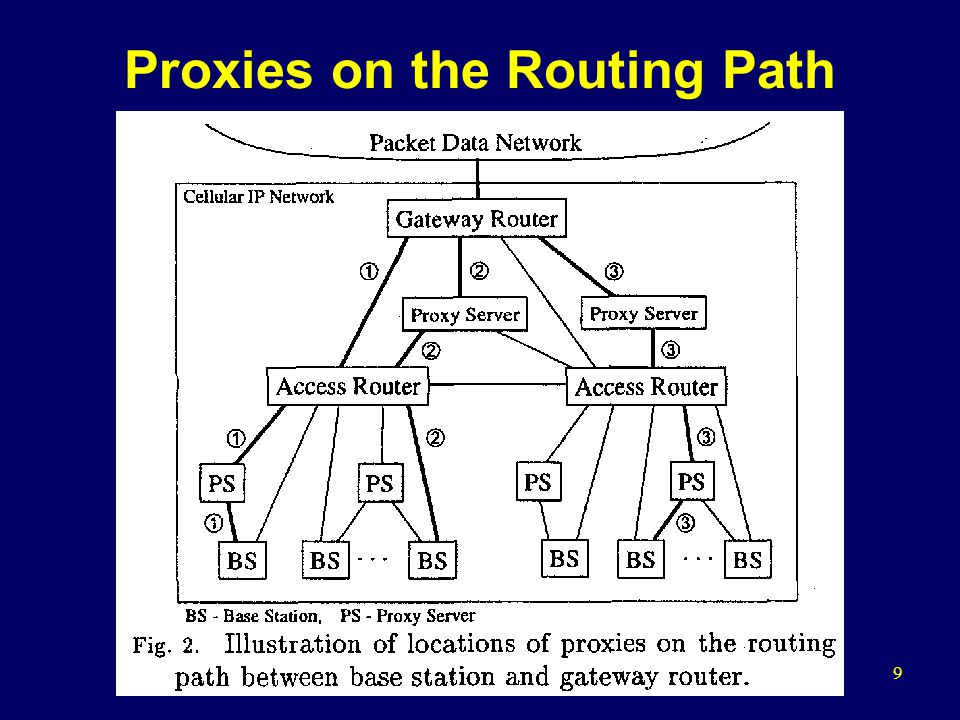 9 Proxies on the Routing Path