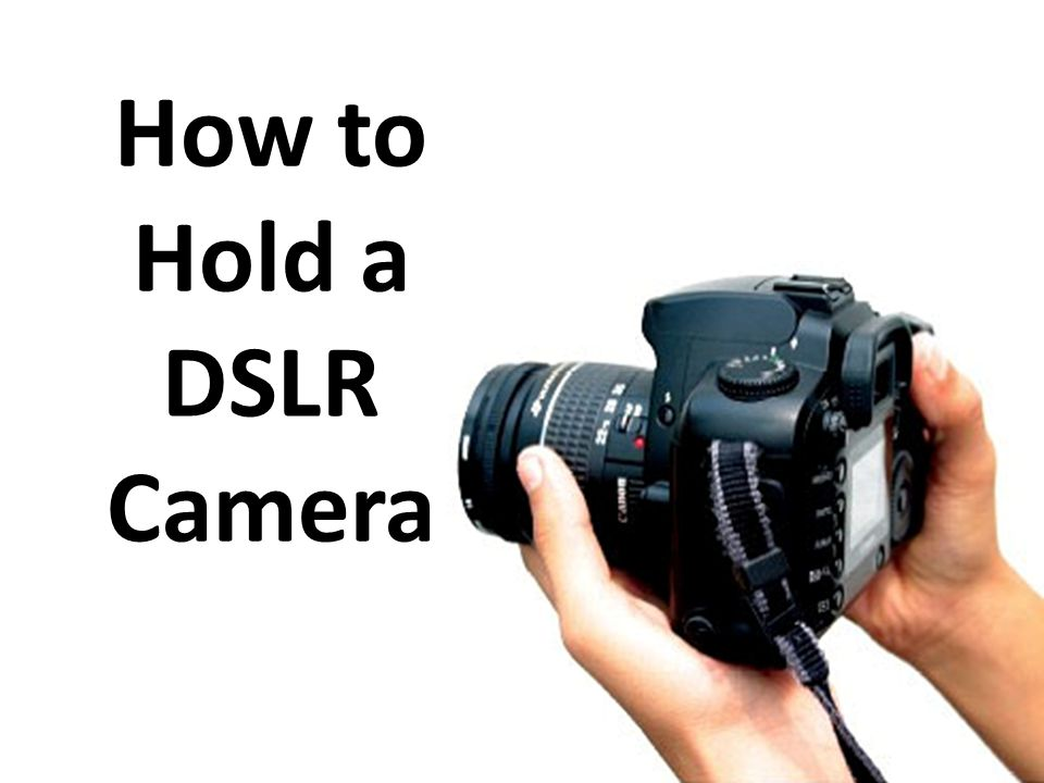 Image result for how to properly hold a dslr camera