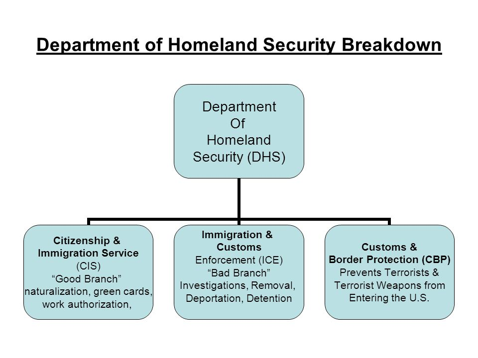 Department of Homeland Security Breakdown Department Of Homeland Security (DHS) Citizenship & Immigration Service (CIS) Good Branch naturalization, green cards, work authorization, Immigration & Customs Enforcement (ICE) Bad Branch Investigations, Removal, Deportation, Detention Customs & Border Protection (CBP) Prevents Terrorists & Terrorist Weapons from Entering the U.S.