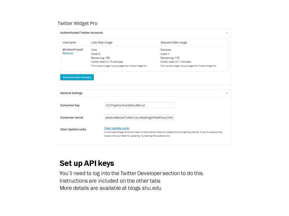 Set up API keys You'll need to log into the Twitter Developer section to do this.