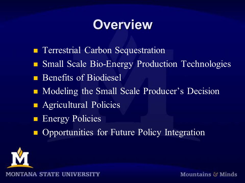 Overview Terrestrial Carbon Sequestration Small Scale Bio-Energy Production Technologies Benefits of Biodiesel Modeling the Small Scale Producer's Decision Agricultural Policies Energy Policies Opportunities for Future Policy Integration