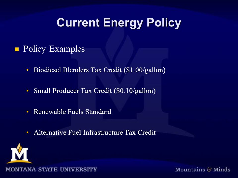 Current Energy Policy Policy Examples Biodiesel Blenders Tax Credit ($1.00/gallon) Small Producer Tax Credit ($0.10/gallon) Renewable Fuels Standard Alternative Fuel Infrastructure Tax Credit