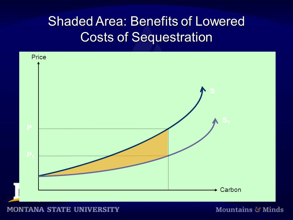 Shaded Area: Benefits of Lowered Costs of Sequestration Price Carbon S1S1 P P1P1 S