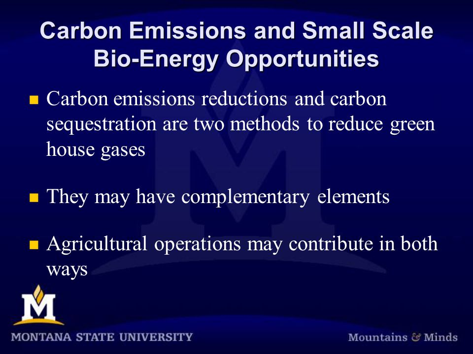 Carbon Emissions and Small Scale Bio-Energy Opportunities Carbon emissions reductions and carbon sequestration are two methods to reduce green house gases They may have complementary elements Agricultural operations may contribute in both ways
