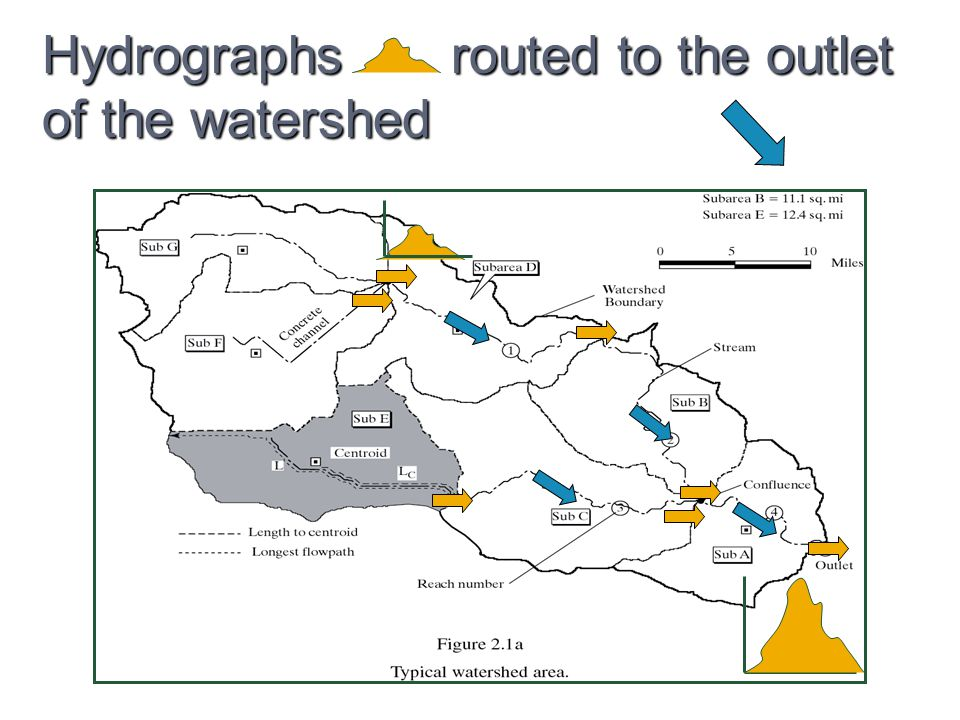 Hydrographs routed to the outlet of the watershed