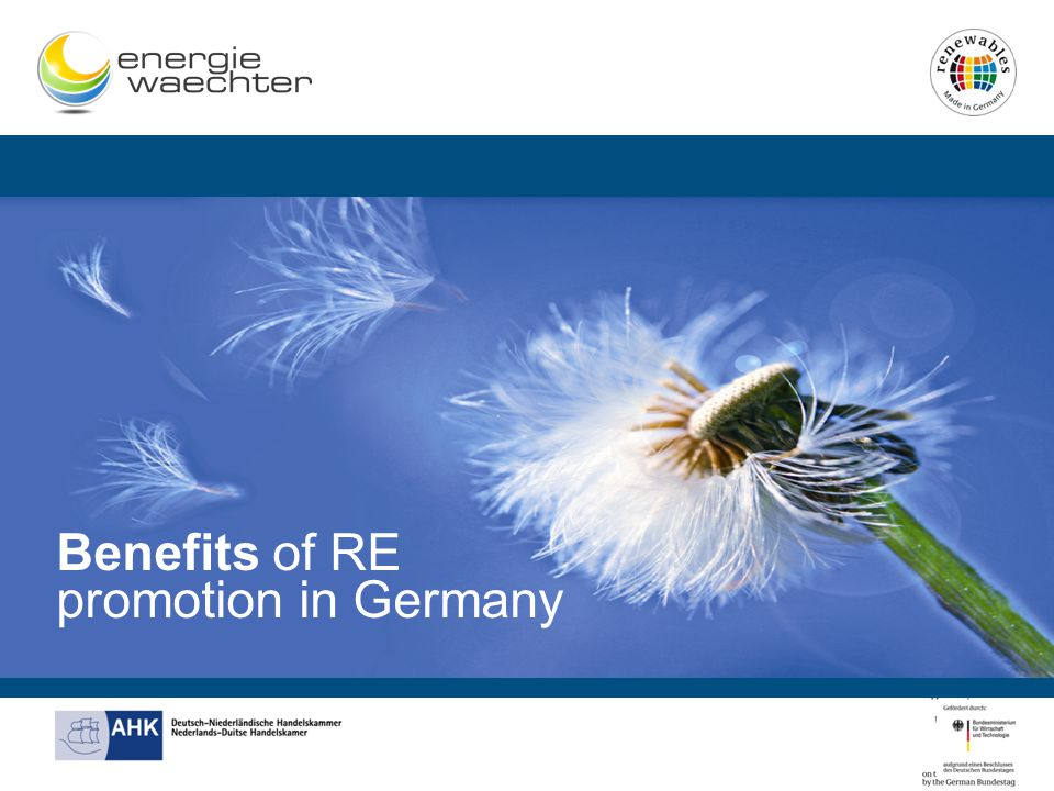 Benefits of RE promotion in Germany