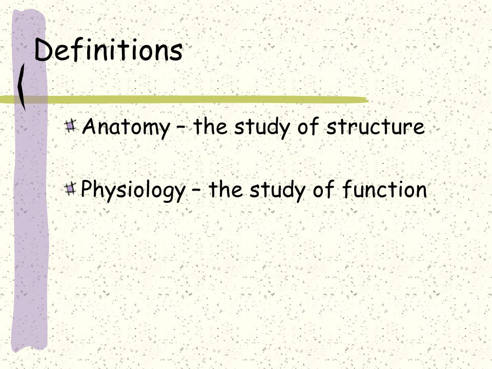 Unit 1 Organization of the Human Body. OBJECTIVES Define Anatomy and ...
