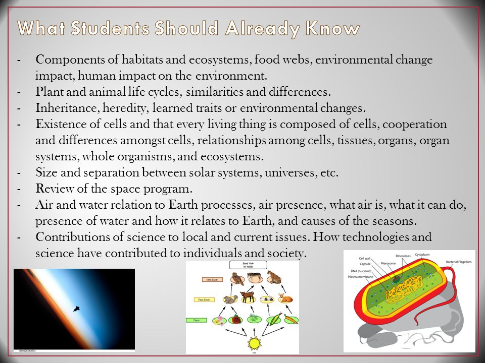 -Components of habitats and ecosystems, food webs, environmental change impact, human impact on the environment.