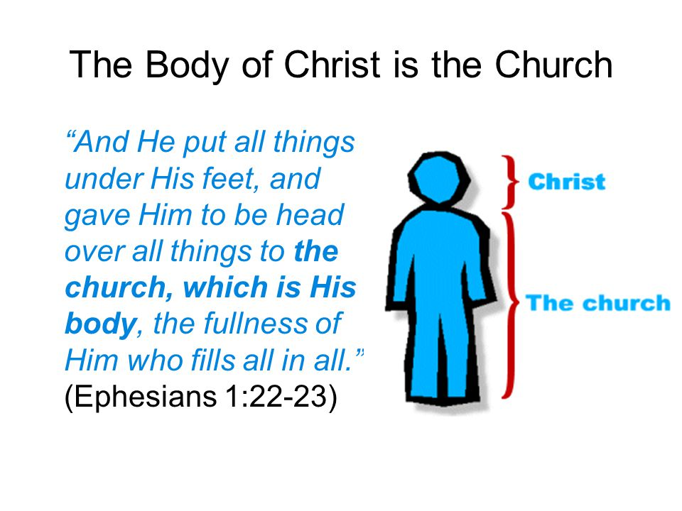The Body of Christ is the Church And He put all things under His feet, and gave Him to be head over all things to the church, which is His body, the fullness of Him who fills all in all. (Ephesians 1:22-23)