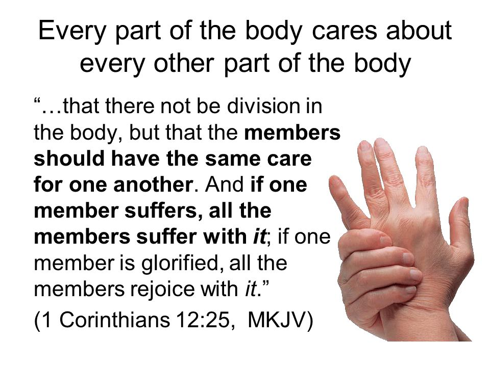 Every part of the body cares about every other part of the body …that there not be division in the body, but that the members should have the same care for one another.