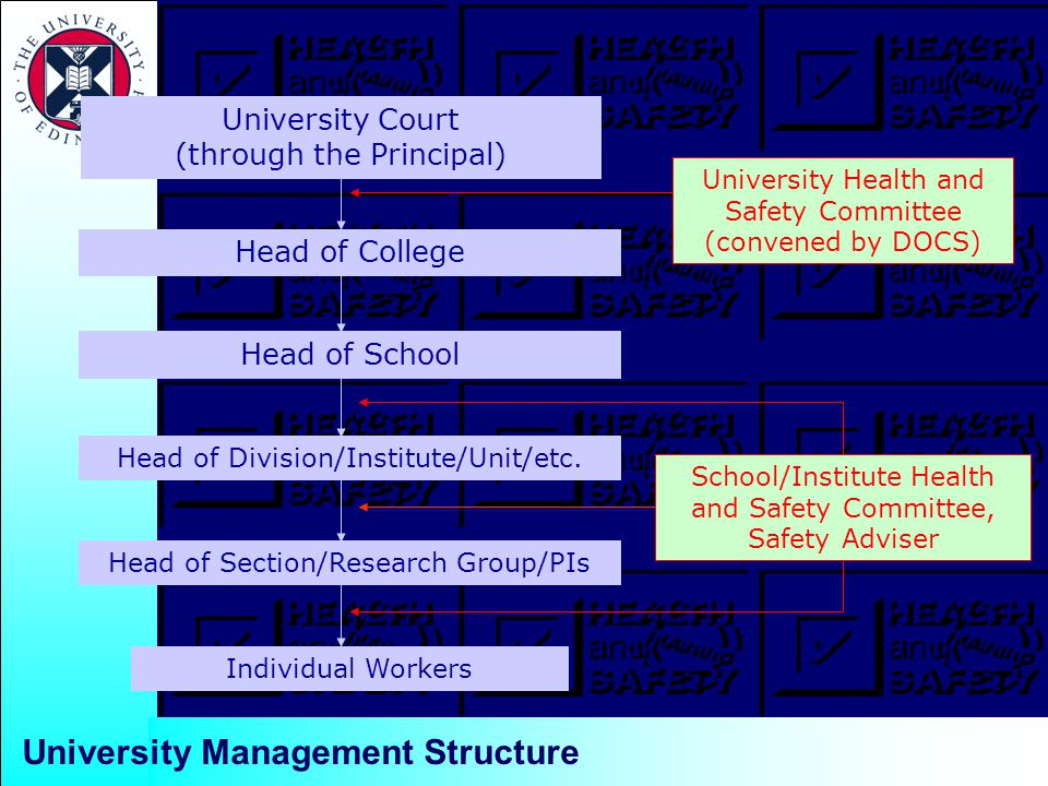University Management Structure University Court (through the Principal) Head of School Head of Section/Research Group/PIs Individual Workers University Health and Safety Committee (convened by DOCS) Head of College Head of Division/Institute/Unit/etc.