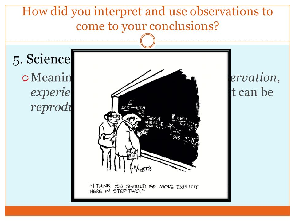How did you interpret and use observations to come to your conclusions.