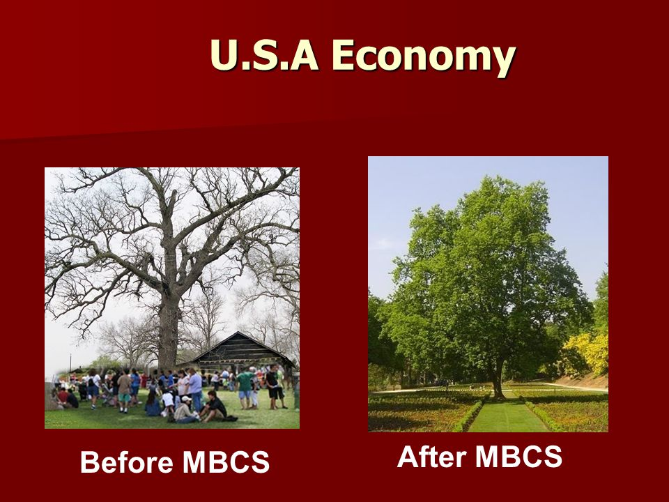 U.S.A Economy Before MBCS After MBCS