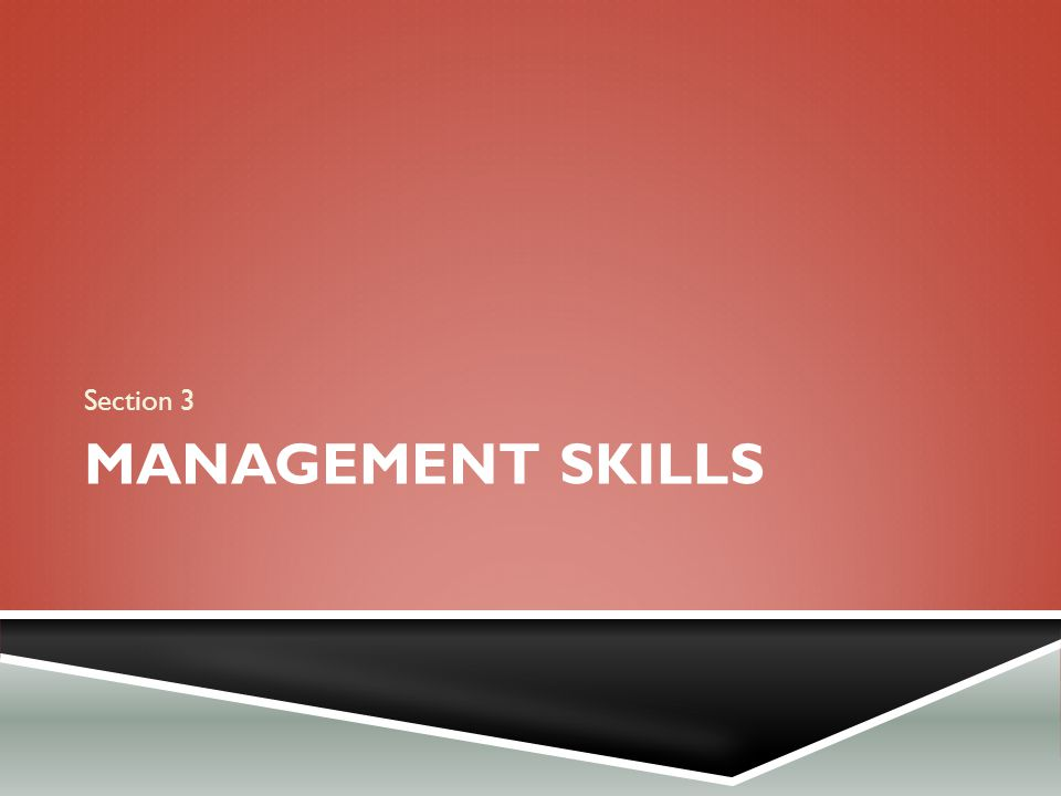 MANAGEMENT SKILLS Section 3