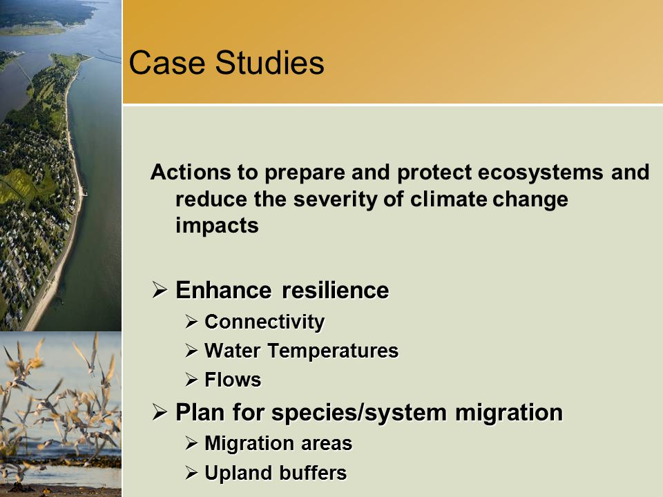 Case Studies Actions to prepare and protect ecosystems and reduce the severity of climate change impacts  Enhance resilience  Connectivity  Water Temperatures  Flows  Plan for species/system migration  Migration areas  Upland buffers