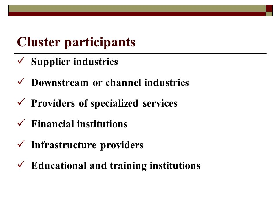 Cluster participants Supplier industries Downstream or channel industries Providers of specialized services Financial institutions Infrastructure providers Educational and training institutions