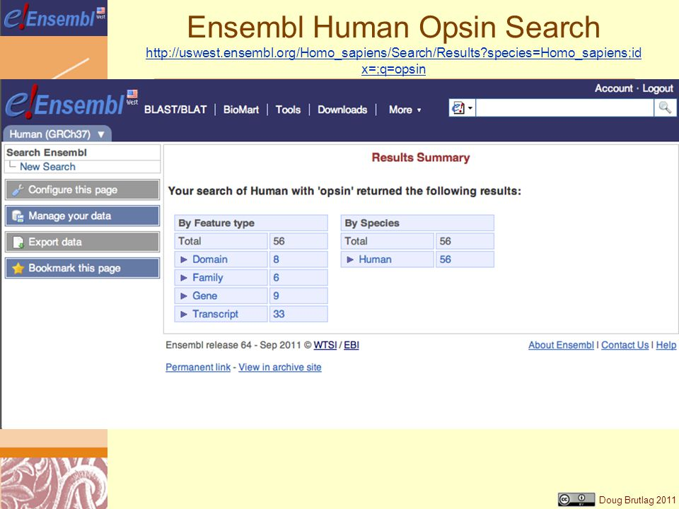 Doug Brutlag 2011 Ensembl Human Opsin Search   species=Homo_sapiens;id x=;q=opsin   species=Homo_sapiens;id x=;q=opsin