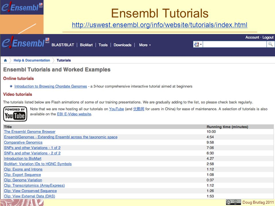 Doug Brutlag 2011 Ensembl Tutorials
