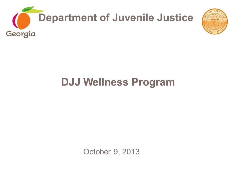 DJJ Wellness Program Department of Juvenile Justice October 9, 2013