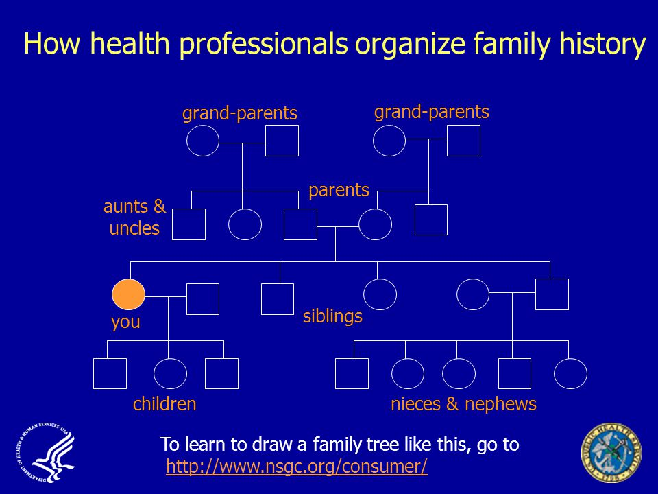 How health professionals organize family history you siblings childrennieces & nephews parents grand-parents aunts & uncles To learn to draw a family tree like this, go to
