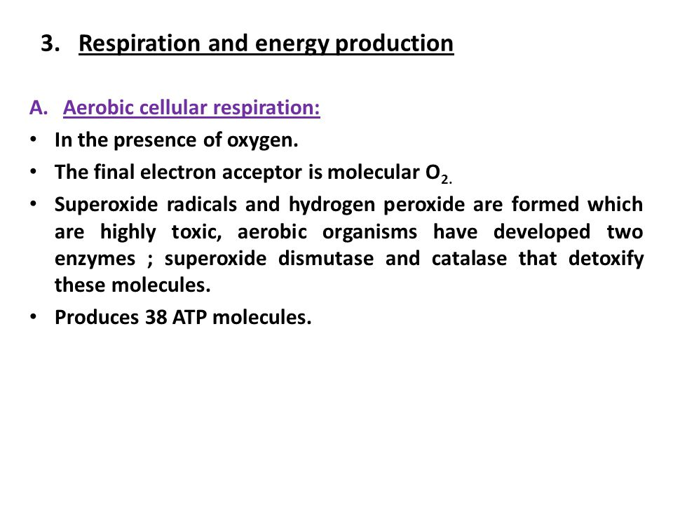3.Respiration and energy production A.Aerobic cellular respiration: In the presence of oxygen.