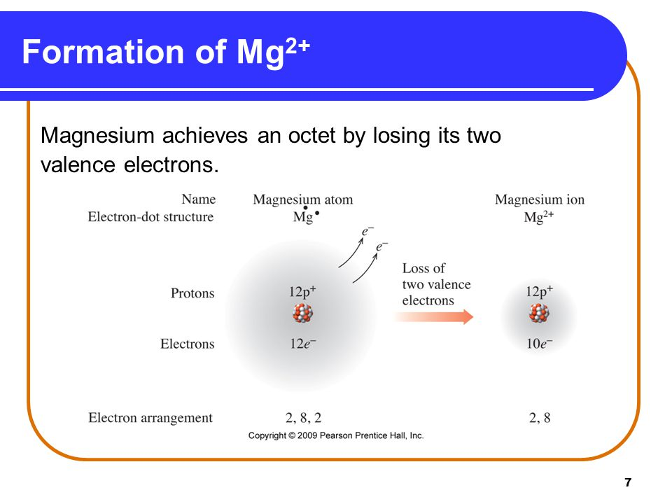 7 Formation of Mg 2+ Magnesium achieves an octet by losing its two valence electrons.