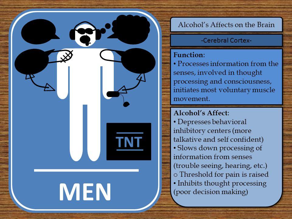 MEN Alcohol's Affects on the Brain -Cerebral Cortex- Function : Processes information from the senses, involved in thought processing and consciousness, initiates most voluntary muscle movement.