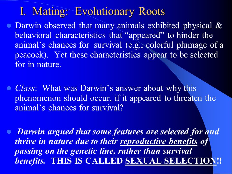 Evolutionary psychology and sex darwin