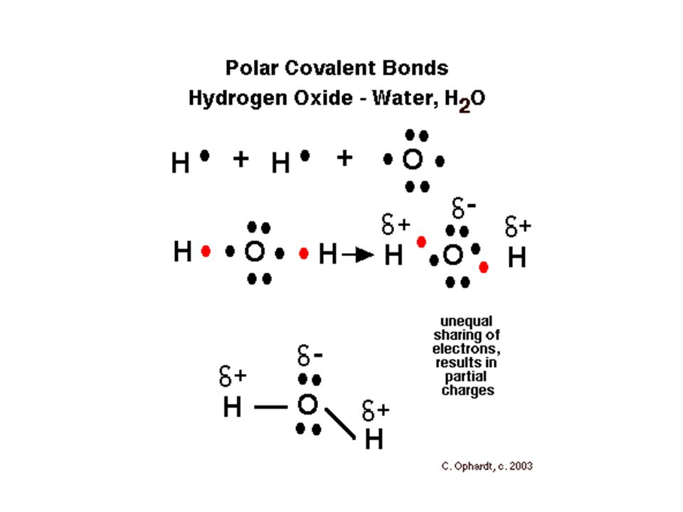 What Are Compounds And Molecules Introduction Since There Are