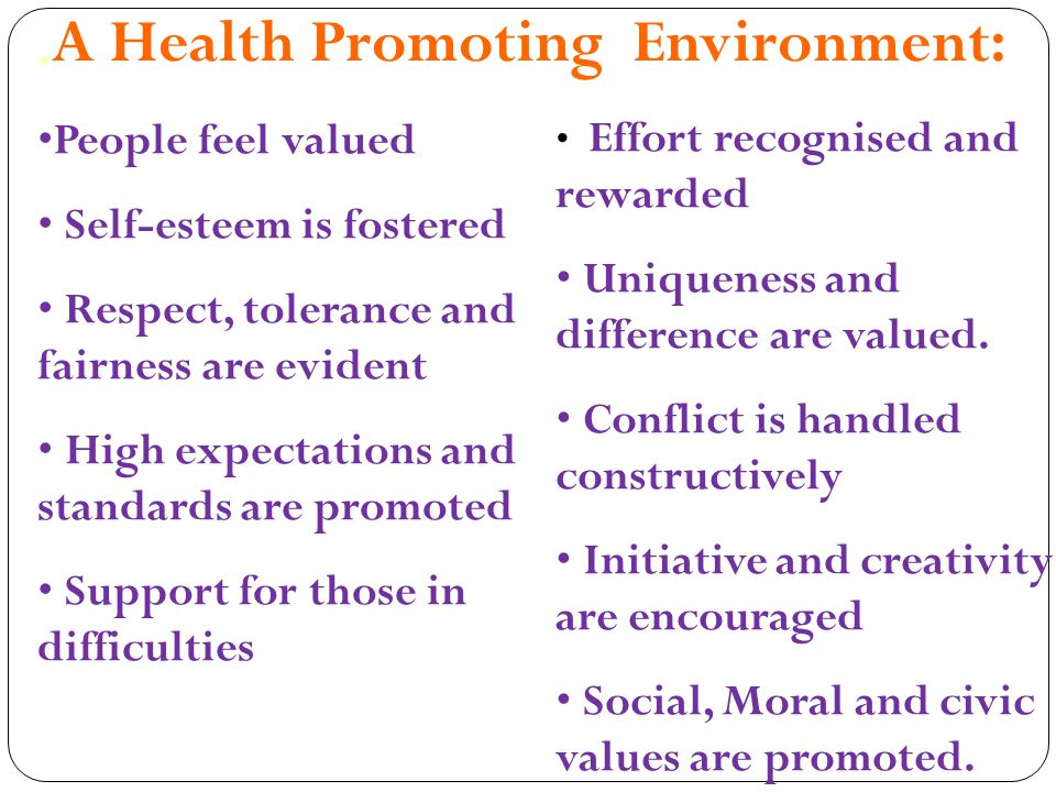 A Health Promoting Environment: People feel valued Self-esteem is fostered Respect, tolerance and fairness are evident High expectations and standards are promoted Support for those in difficulties Effort recognised and rewarded Uniqueness and difference are valued.