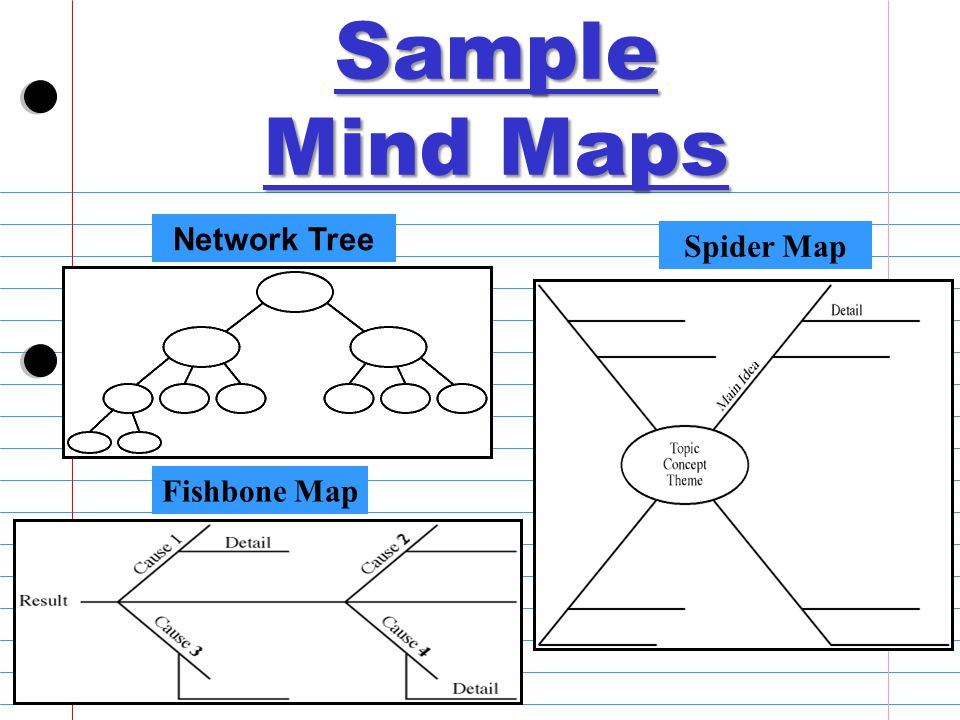 Network Tree Spider Map Fishbone Map Sample Mind Maps
